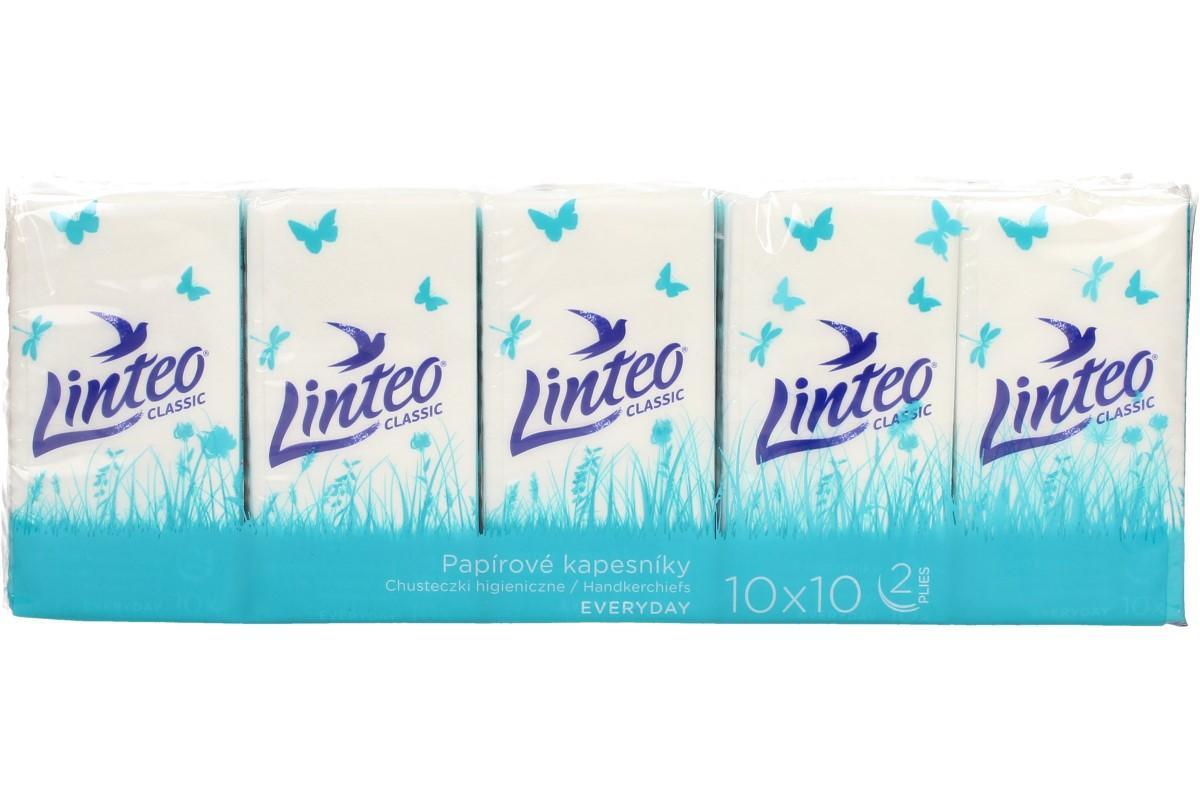 Papírové kapesníky Linteo 2vrstvé 10x10