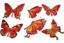 Foto 5 - 3D samolepky na zeď červení motýli 6ks