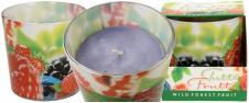 Vonná svíčka Tutti Frutti lesní …
