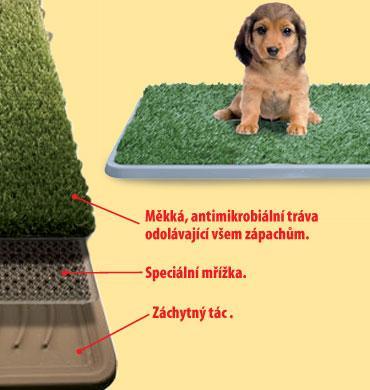 Foto 1 - Psí toaleta - velká s rozměry 50 x 63 x 3 cm pro Vašeho psa. Psí toaleta umožňuje vašemu psovi, aby si ulevil, kdykoliv potřebuje a to pouze na Slevovaru!