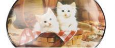 Oválné prostírání Dvě bílá koťata v ošatce