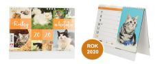 Kalendář 2020 Kočky a koťata 22 x 17 cm